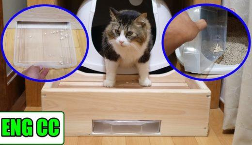 猫砂の飛び散り防止対策でトイレの前に手作り賽銭箱を設置!これで掃除も楽になる!?【Eng CC】