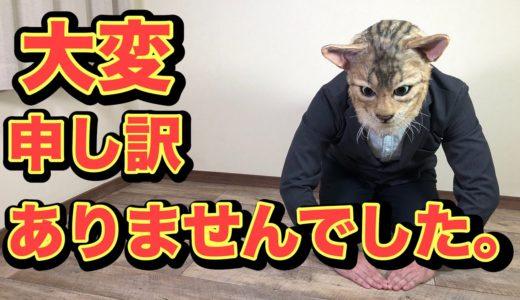 ベンガル猫の妊娠出産について改めてご報告がございます。