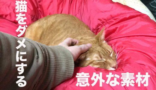 猫をダメにする素材、身近なところで発見される My cats love the sleeping bag
