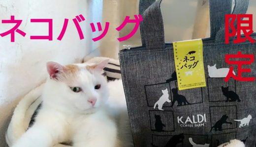 カルディ猫の日バッグ!世界ネコの日