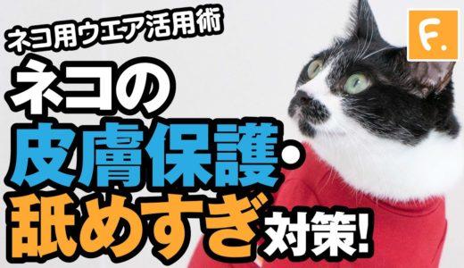 【犬猫の服 フルオブビガー】シンプル袖付きネコ用Tシャツ 過剰グルーミング対策、皮膚保護に