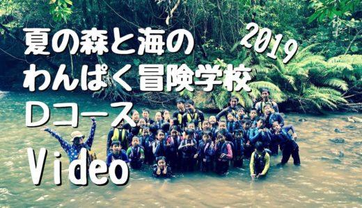 夏の森と海のわんぱく冒険学校2019D(ネコのわくわく自然教室・2019/08)