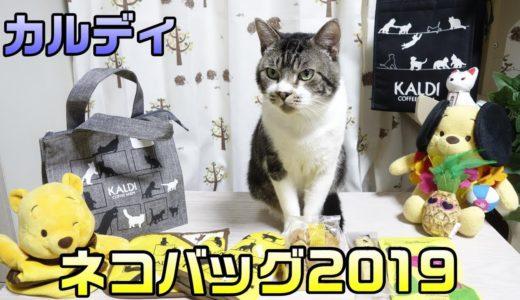 カルディのネコバッグ2019を購入したので紹介☆リキちゃんファミリーに新メンバー登場!【リキちゃんねる・猫と一緒に商品紹介】8月8日は世界猫の日