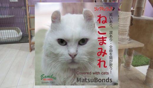 12匹の猫が歌って奏でる♪♪これがほんまの「ねこまみれ」やで!!