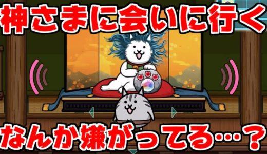 【にゃんこ大泥棒】泥棒生活2日目!ネコ神さまに会いに行こう!#2
