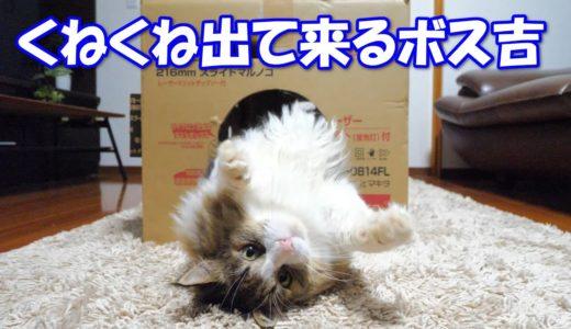 くねくね穴から出て来る巨猫のボス吉