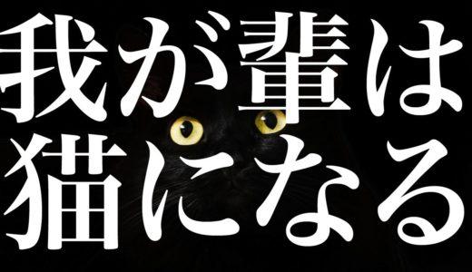 【我が輩は猫になる】ネコ大好き可愛い!