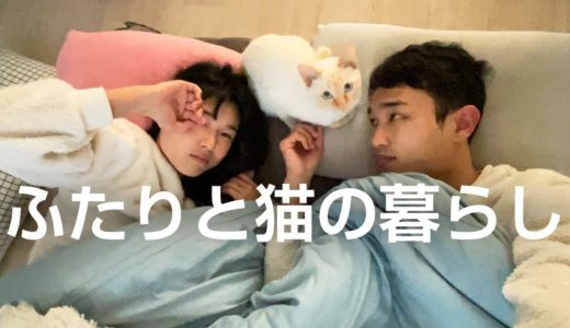 寝床に猫がくる冬のルーティン | ふたり暮らしの日常