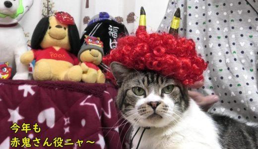 節分とねこ☆リキちゃん今年も赤鬼に変身☆豆まきバズーカーで鬼退治?【リキちゃんねる・猫動画】Cat video キジトラ白猫の居る暮らし
