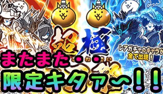 超極ネコ祭 またまた・・キタァ〜! にゃんこ大戦争