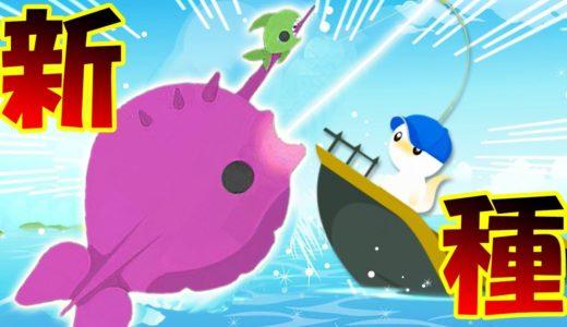 新種のドラゴンザメ続々登場!! ネコたんドラゴンをついに発見したら新種のサメだらけだった!! 猫ちゃんのサメ釣り生活再始動!! – cat gose fishing #16