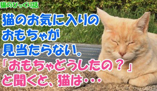 【猫のびっくり話】猫のお気に入りのおもちゃが見当たらない。「おもちゃどうしたの?」と聞くと、猫は・・・