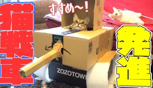 """大流行の""""ねこ戦車""""作ってみたら猫たちが大暴走!?"""