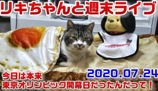 週末リキちゃんライブ☆今日はスポーツの日☆ねこライブ配信☆夜のねこの様子【リキちゃんねる・猫動画】Cat video きじしろねこのいる暮らし